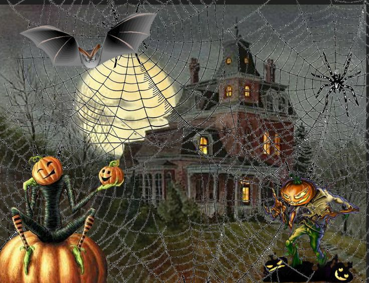 1000 Images About An Ode To Halloween On Pinterest