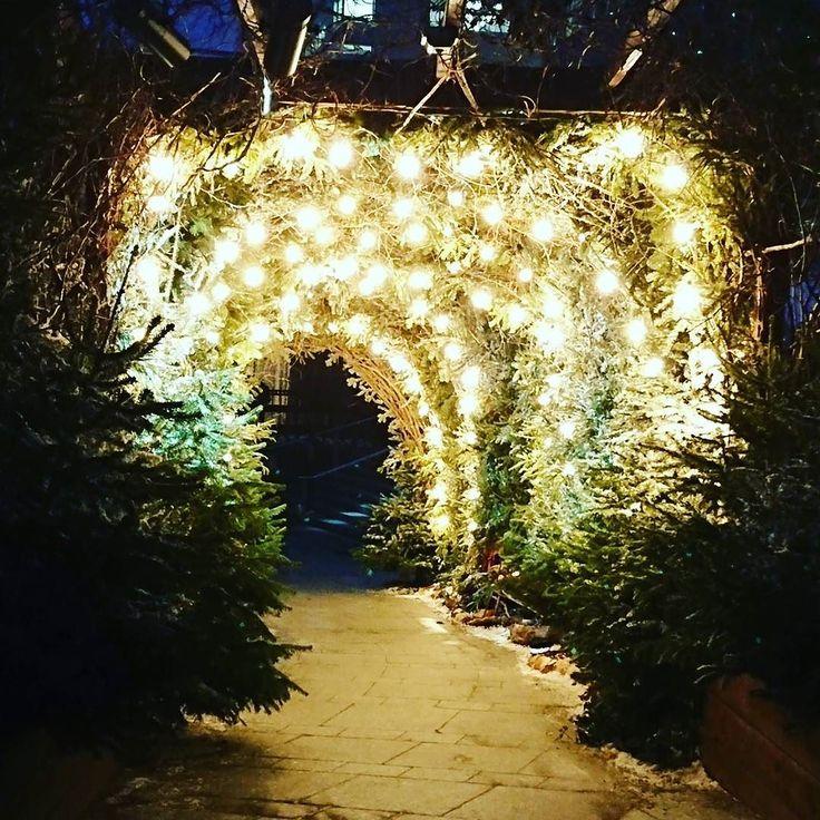 Mini #tree #tunnel with #xmas lights