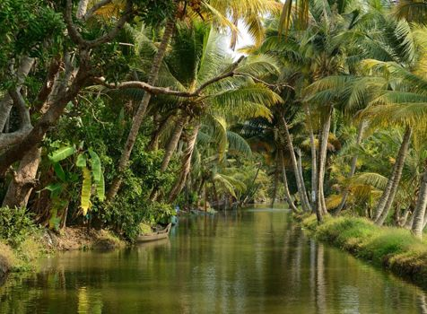 Avail best offers, best deals for your Kerala holiday and tour packages at Flexitours -  #KeralaTourPackages #Keralatrip #HolidayinKerala