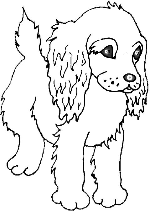 Dog Coloring Pages Color This Puppy Page Of A Cute Cocker Spaniel Lots Great Book For You To