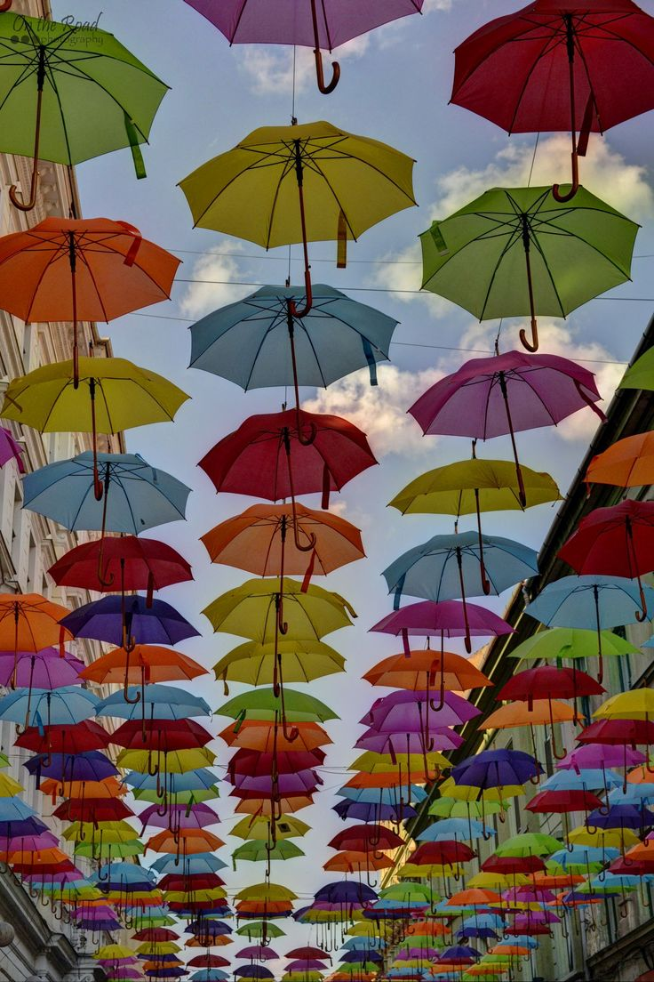 The colorful umbrellas are once again above Alba Iulia Street in Timisoara. And just in time for Timfloralis – Timisoara's Flower Festival.