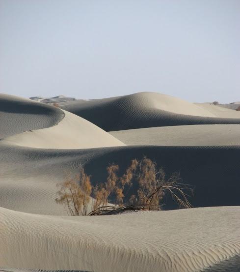 Taklamakan Desert - 500 miles of moving desert in China.