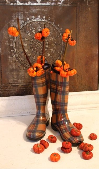 These boots, once I clean them out, will be so cute with my autumn colored, tartan vest. Thank you.