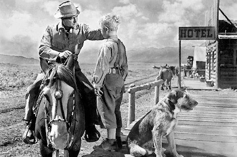 It starts with a great story, the story of Shane (Alan Ladd), a quiet gunslinger who is trying to escape his past and befriends a pioneer family who have settled out west. Description from movieutopia.wordpress.com. I searched for this on bing.com/images