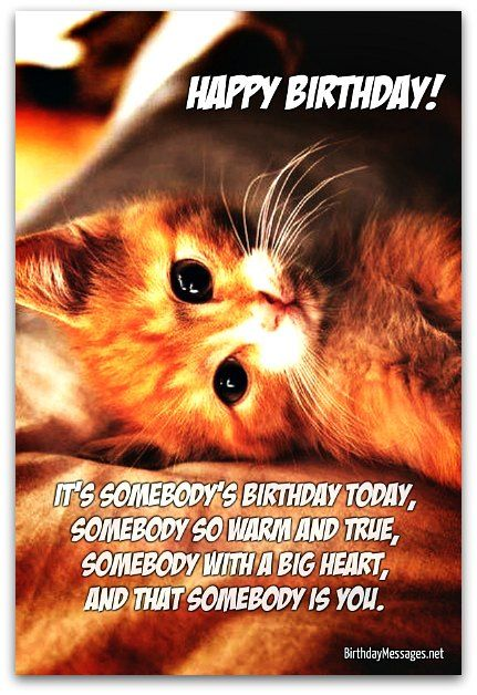 Image Result For Happy Birthday Quotes For Guy Best Friend