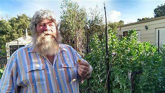 Local backyard farmer Andrew Nicholson - Aquaponics