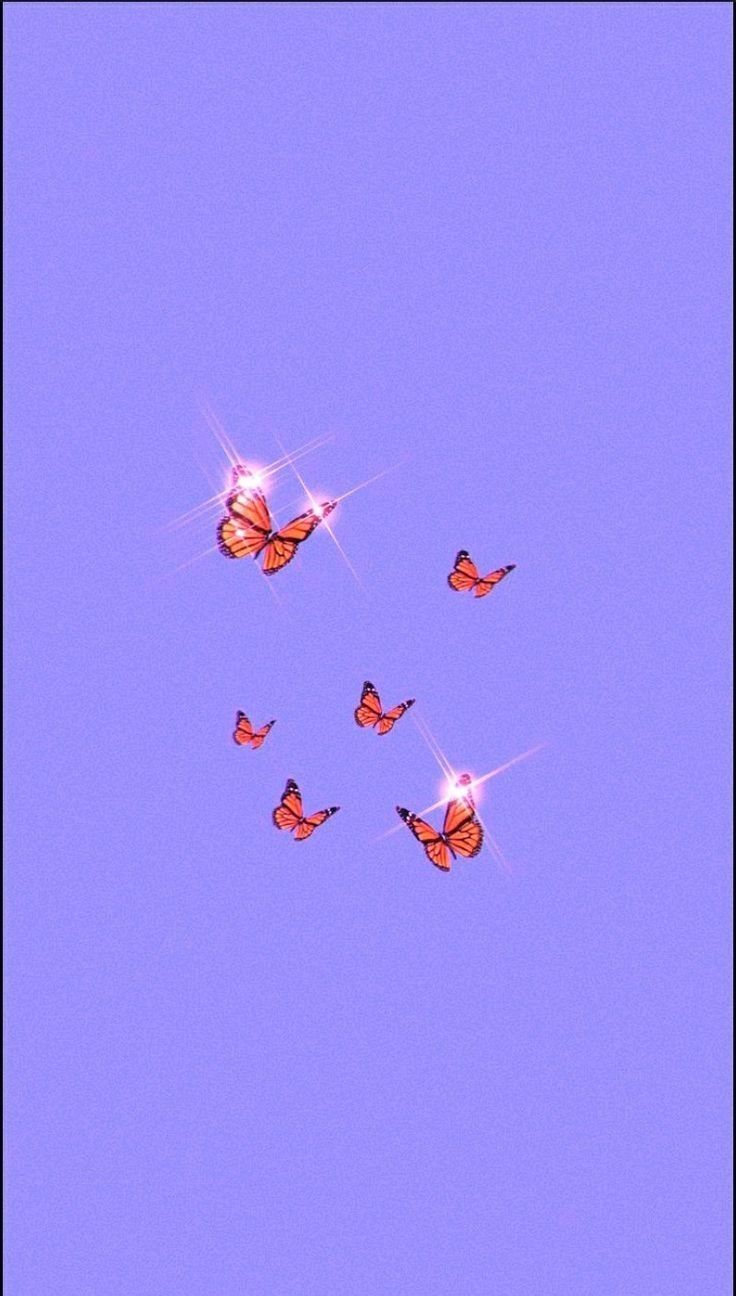 In 2020 Purple Wallpaper Iphone Iphone Wallpaper Tumblr Aesthetic Butterfly Wallpaper Iphone