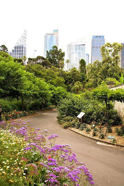 Royal Botanical Gardens Sydney Nsw Australia
