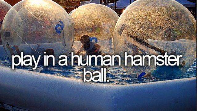 Human Hamster!