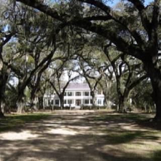 Rosewood Plantation. Louisiana