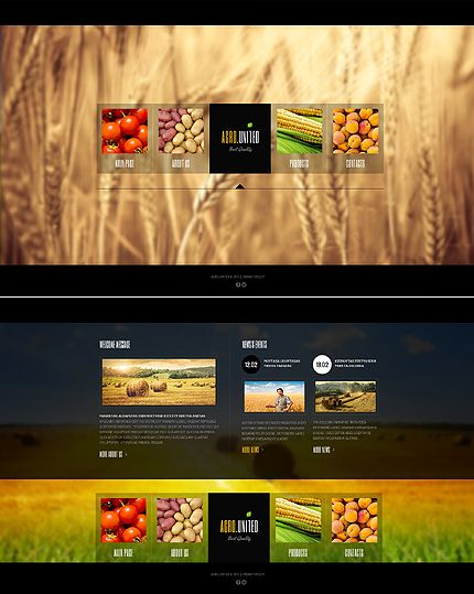 Website Template #42836