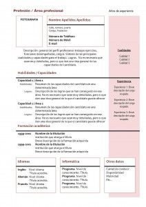 Currículum Vitae: Modelo Funcional 4