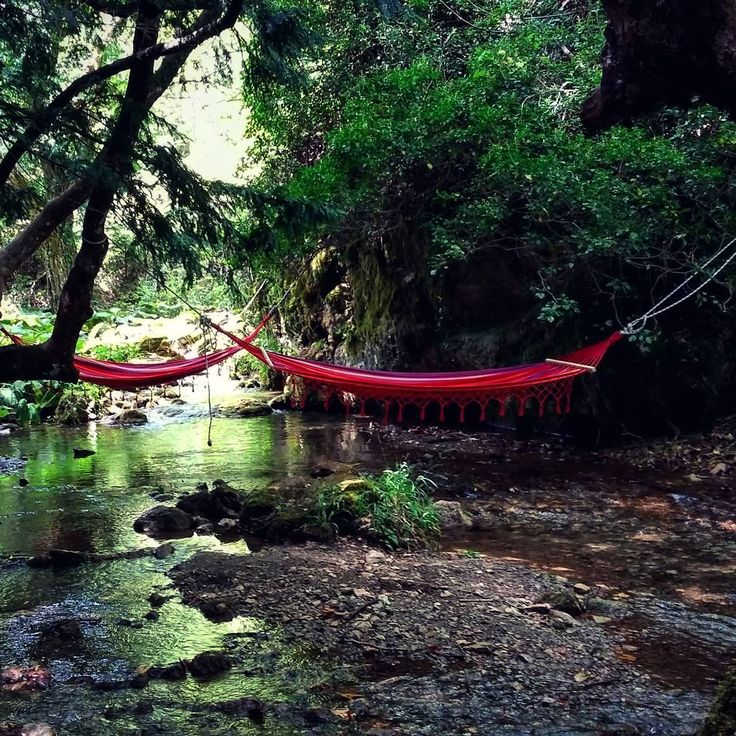 When you are totally exhausted, this is what you dream of. A warm morning, a peaceful forrest, a singing little river. A Summer.