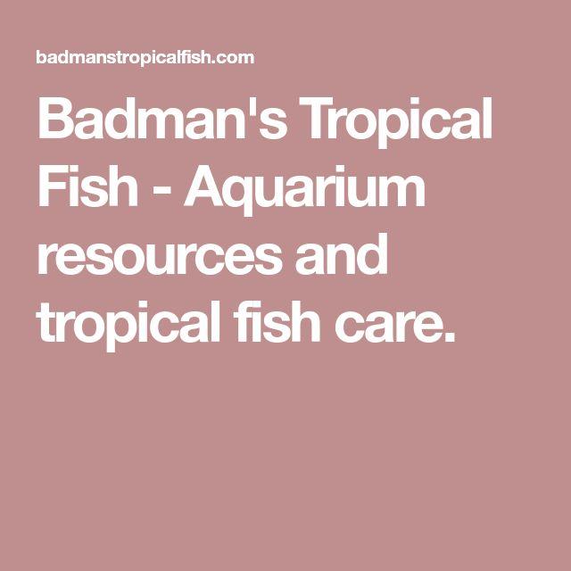 Badman's Tropical Fish - Aquarium resources and tropical fish care.