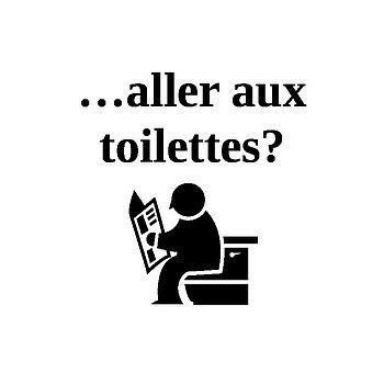 Important Phrases Posters- These are posters to put on the well helping students remember how to ask regular questions as well as other important conversation pieces.   Included are: est-ce que je peux aller aux toilettes tailler mon crayon boire de l'eau parler anglais aller a l'infermiere descendre au bureau aller a mon casier comment dit-on ___  please thank you you're welcome excuse me