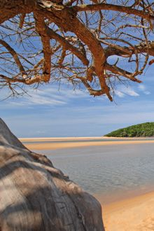 iSimangaliso Wetland Park in Kwazulu-Natal (formerly the Greater St Lucia Wetland Park) South Africa