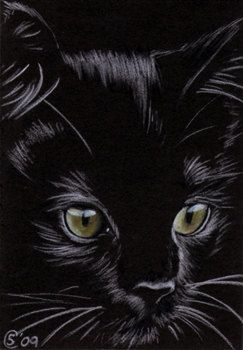Black CAT kitten Halloween chat noir 156 drawing painting Sandrine Curtiss Art Limited Edition PRINT ACEO