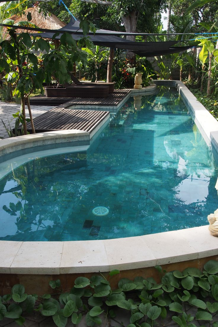 Green tropical pool surrounded by a beautiful tropical garden and a big mango tree