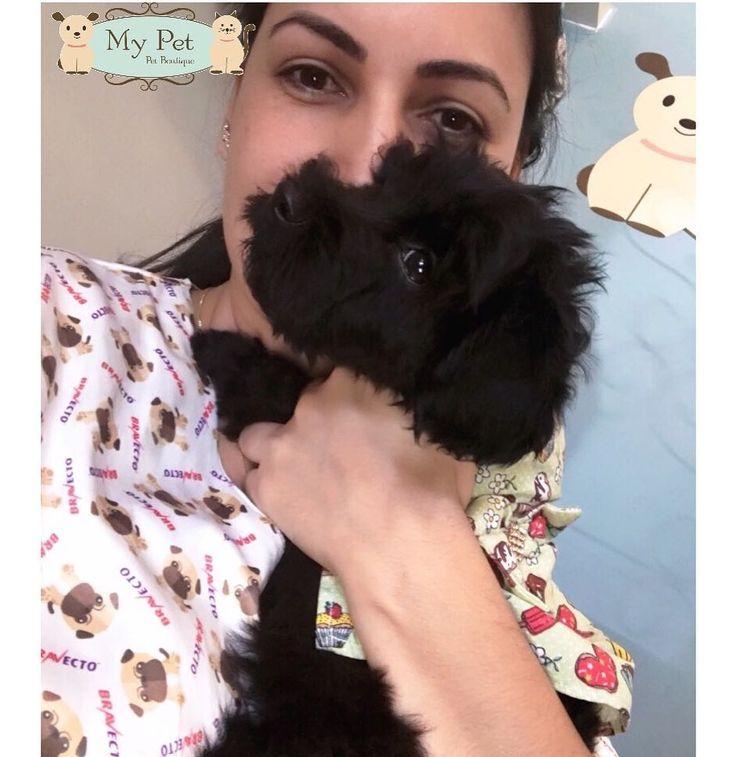 Felícia em ação  muitos beijos nela #BabyPitaia #puppy #delicia  #mypetvix #linda #princesa  . Mãe: @damyllebueno  . . . . #petboutique #boutiquepet #petshop #vet #veterinary #veterinarian #veterinarylife #veterinarymedicine