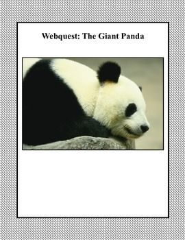 WebQuest: The Giant Panda Grades  3-5 Pandas are  charming and playful animals. This web search is designed to give students factual information about panda bears as they read for information using the internet. During the search they use a variety of strategies and skills that will build their strengths in reading. An Answer Key is included.   #pandas
