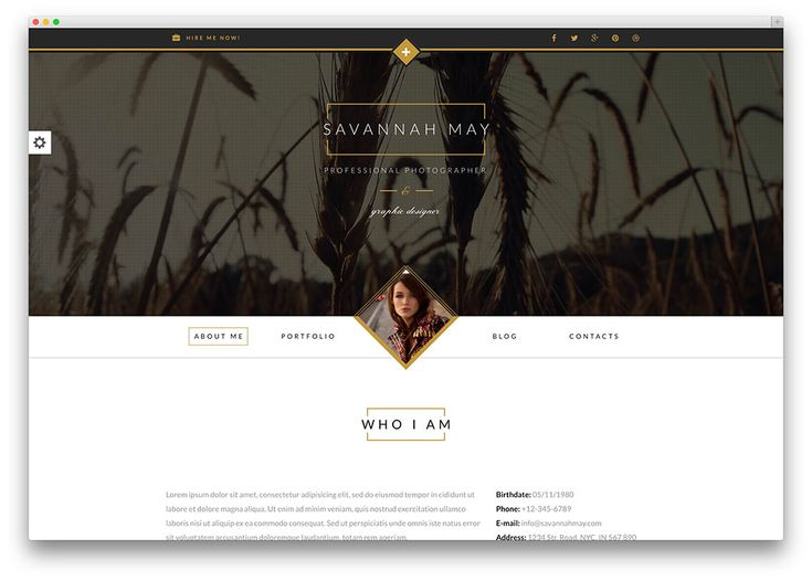 11 best More of the Best Resume, CV \ vCard WordPress Themes - wordpress resume template