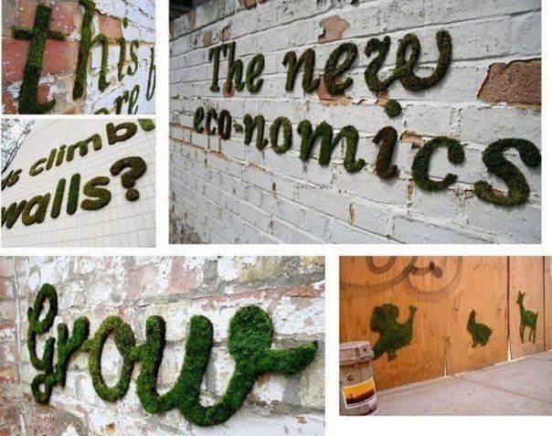 Как вырастить надпись или рисунок из мха на стене? - Babyblog.ru