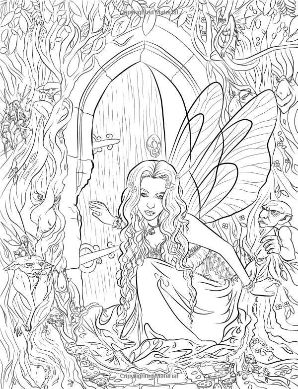 fairy companions coloring book fairy romance dragons and fairy pets fantasy art coloring by selina selina fenech davlin publishing - Detailed Coloring Pages 2