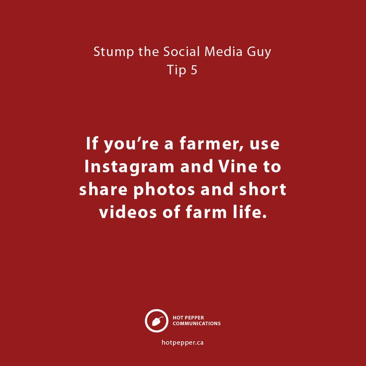 If you're a farmer, use Instagram and Vine to share photos and short videos of farm life.