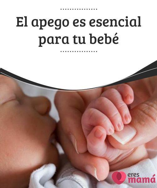 El #apego es esencial para tu #bebé El apego es una #relación especial que el niño establece con un número reducido de personas.Y además es #esencial para tu bebé.