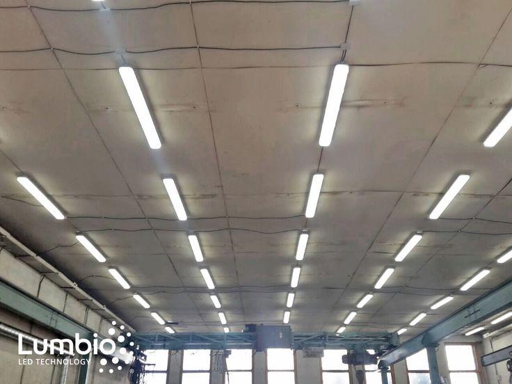 LED Tri Proofs Lumbio Installed