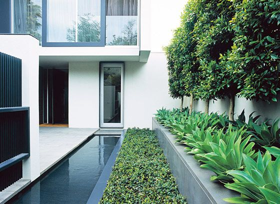 Beautifully modern landscapes - Jack Merlo Design