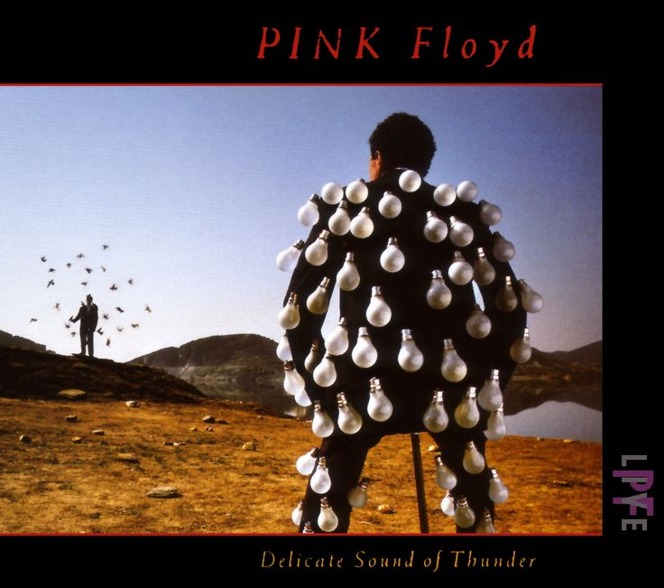 Pink Floyd, Delicate Sound of a Thunder #cover #album