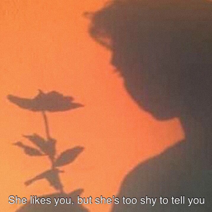 aesthetic orange quotes shadow quote peach she likes