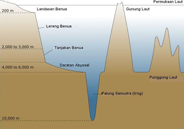 Punggung laut adalah rangkaian perbukitan di dalam laut dan kadang-kadang muncul di permukaan laut.