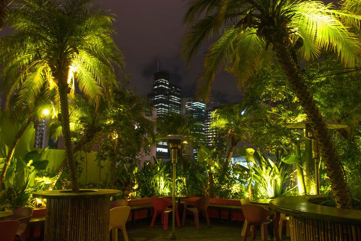Palmz Rooftop Bar 193 Bourke Street Melbourne