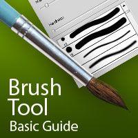 Brush Tool  Basic Guide