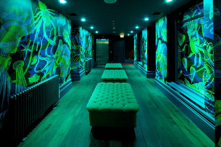Banjo Jersey Loo Lobby #restaurant #sthelier #jerseychannelislands