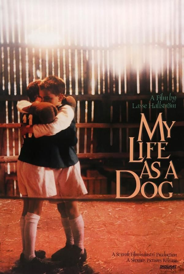My Life As A Dog 1985 In 2020 Movie Posters Original Movie Posters Best Dramas