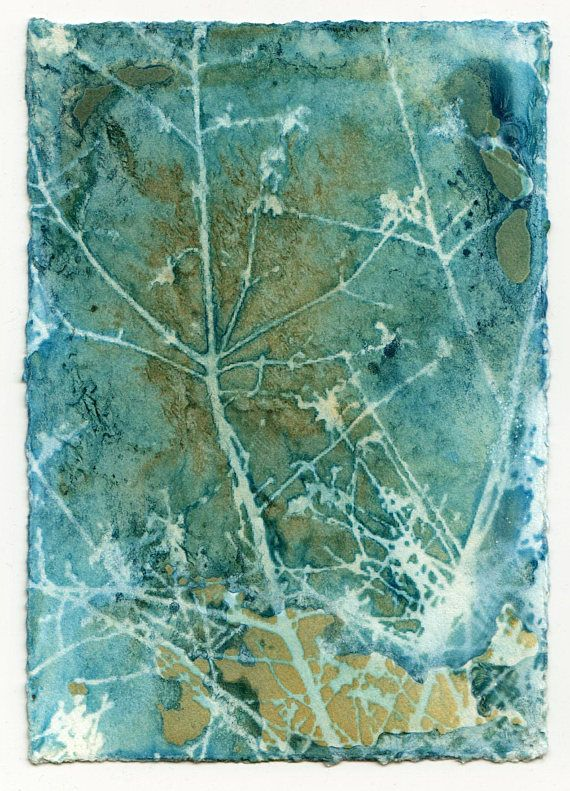 100 best Cyanotypes images on Pinterest Printing, Printmaking and - new blueprint paper binding strips