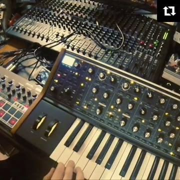 #Repost @schtang ・・・ #jamuary2017 Day 13!  Still going strong in fucking JAMuary. It's the second day with this beast (SUB37) and I'm still taking baby steps. Today some Triplety mess with some moogy filter sweeps. #korg #electribe #emx #e2 #techno #gearporn #studio #studioporn #musicproducer #instamusic #instamusica #producer #bedroomstudio #bedroomproducer #moog #moogsub37 #sub37 #edm #house #dance #live #jammin