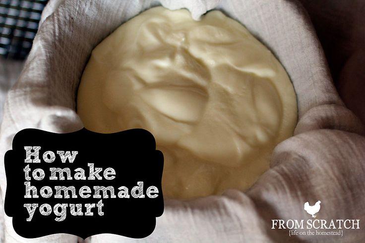 How to Make Homemade Yogurt - a Homemade Yogurt Recipe - From Scratch Magazine
