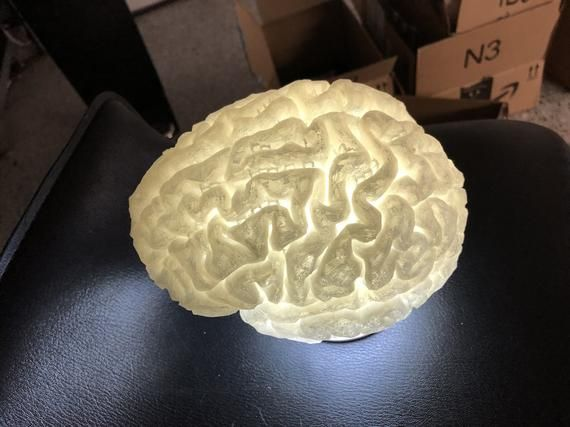 Brain Lamp Rechargeable Water Proof Includes Remote Etsy 3d Printing Plastic Design Lamp