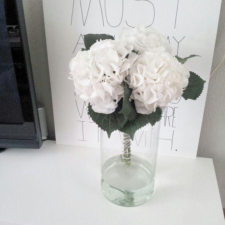 Super mooi die witte hortensia