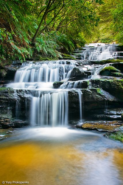 Leura Cascades, one of the most beautiful corners around the Blue Mountains (near Sydney, Australia)