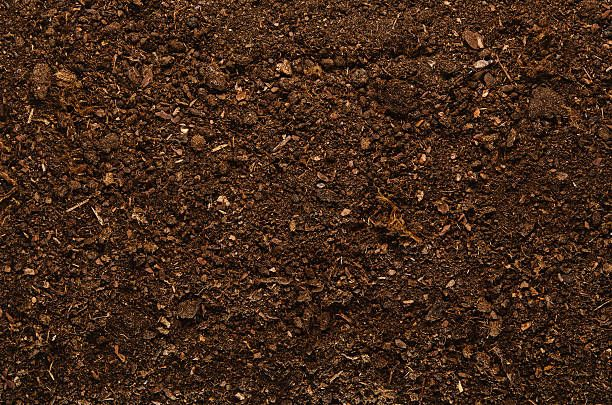 Image Result For Soil Texture Terriccio