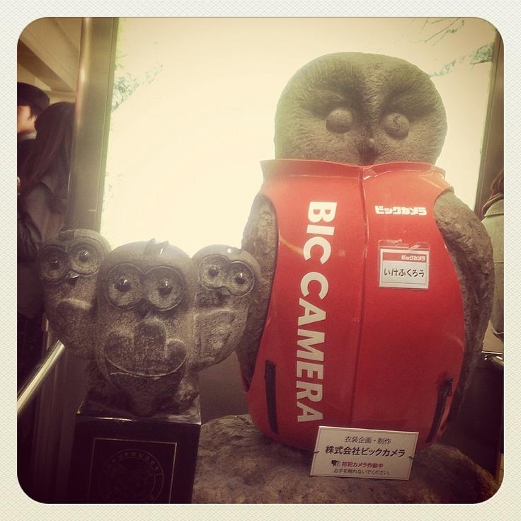 [いけふくろう*2012/12/08]     いけふくろうがビックカメラの店員さんになりまったぁー꒰๑꒪▿꒪๑꒱ᵎᵎᵎ        @池袋駅