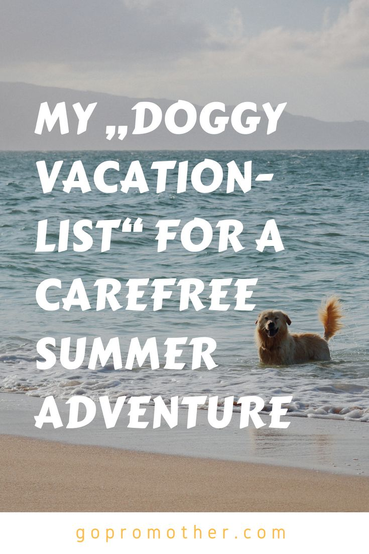 """my """"doggy vacation-list""""for a summer adventure 