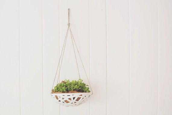 These hanging planters are designed to be used with crawling plants and succulents.  Each planter comes with a custom cut coco liner as well
