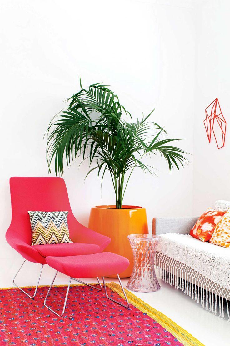 red-arm-chair-colour-palm-Pires-aug15