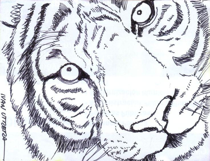 Ms de 25 ideas increbles sobre Dibujos a lapicero en Pinterest